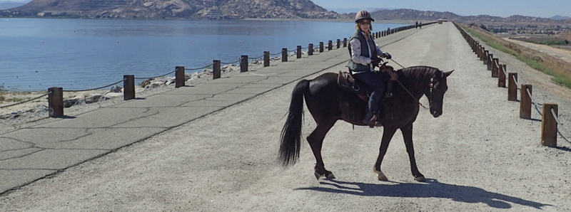 Solo and Peggy on Lake Perris Dam